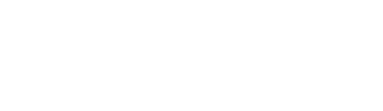 PerMentis – Initiatives for Change